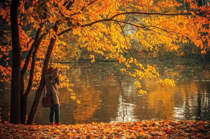 rula-sibai_fall_autumn_leaves-700x465